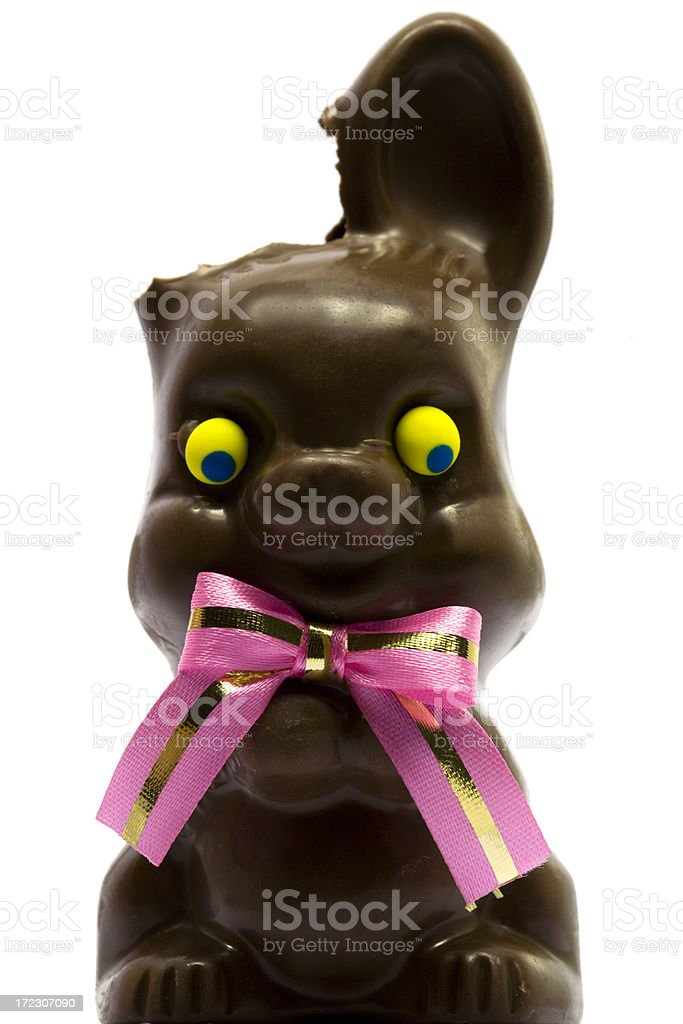 Easter Bunny Tragedy royalty-free stock photo