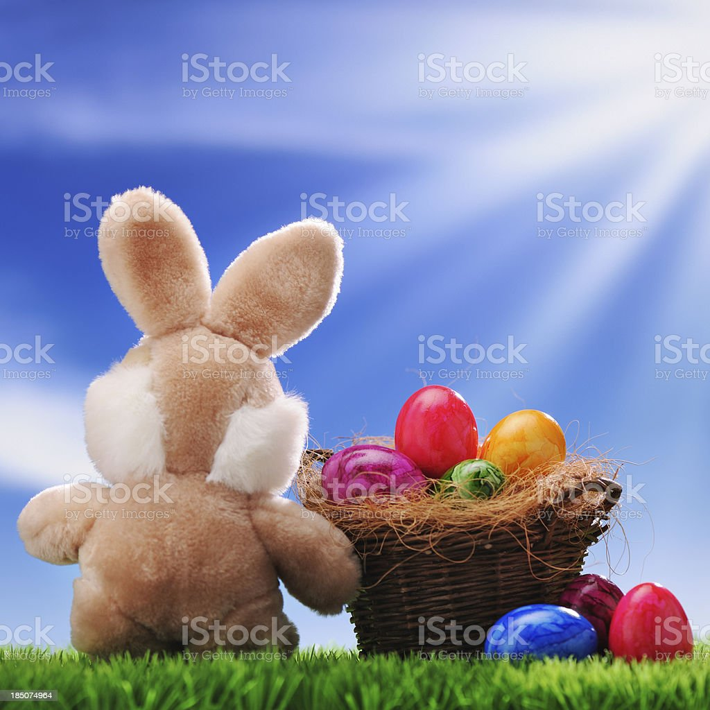 Easter bunny with colorful eggs royalty-free stock photo