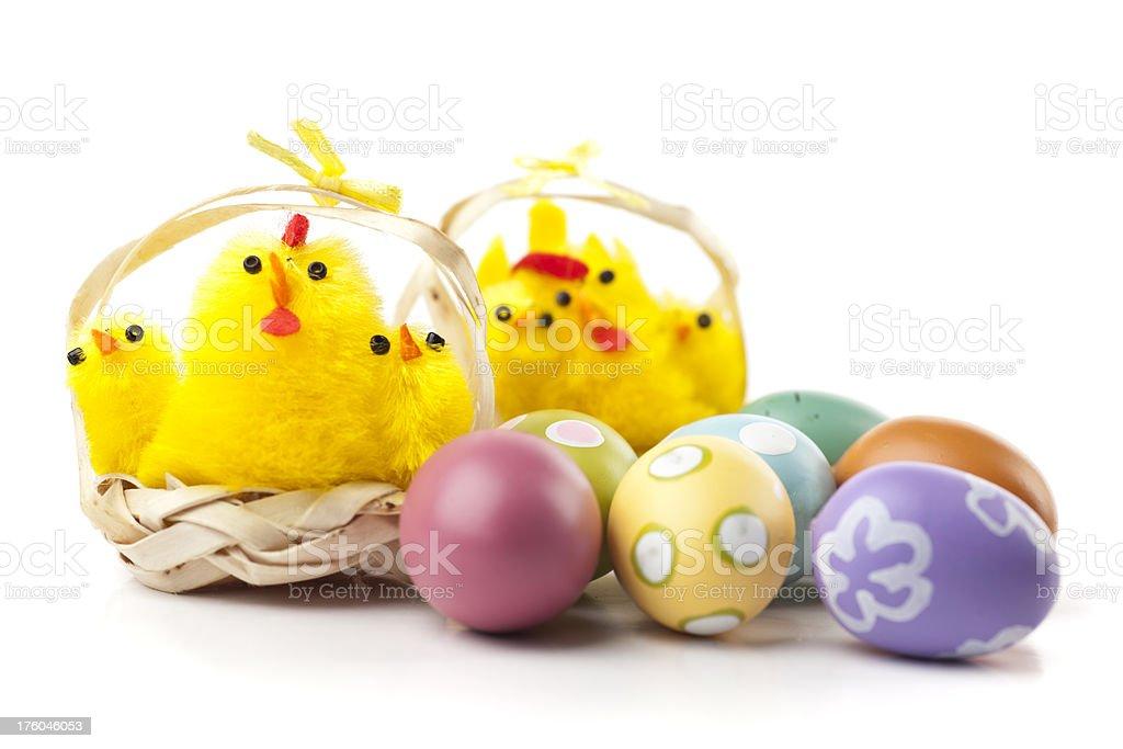 Easter chicks stock photo