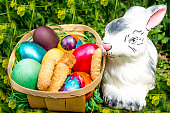 Easter colored eggs with biscuits and bunny