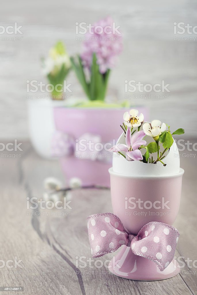 Easter composition, text space stock photo