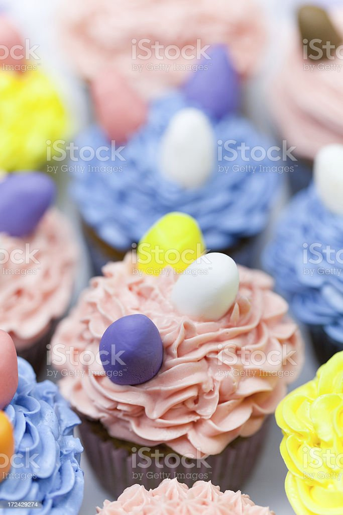 Easter Cupcake royalty-free stock photo