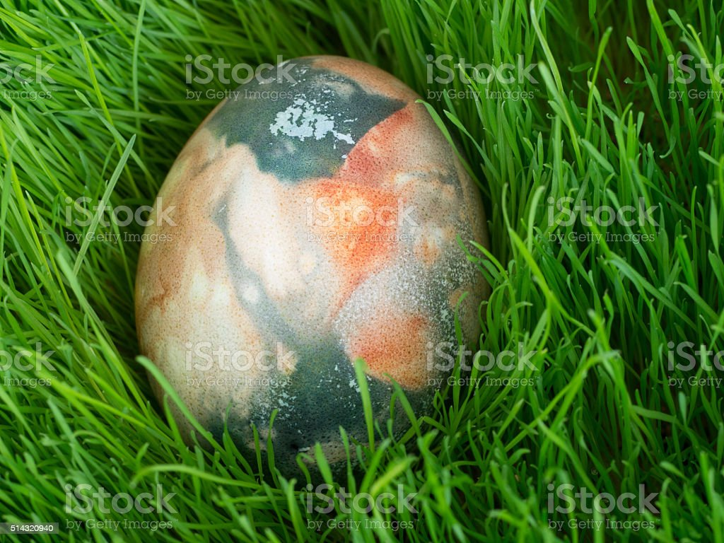 Easter Dekoration with colorful egg in grass royalty-free stock photo