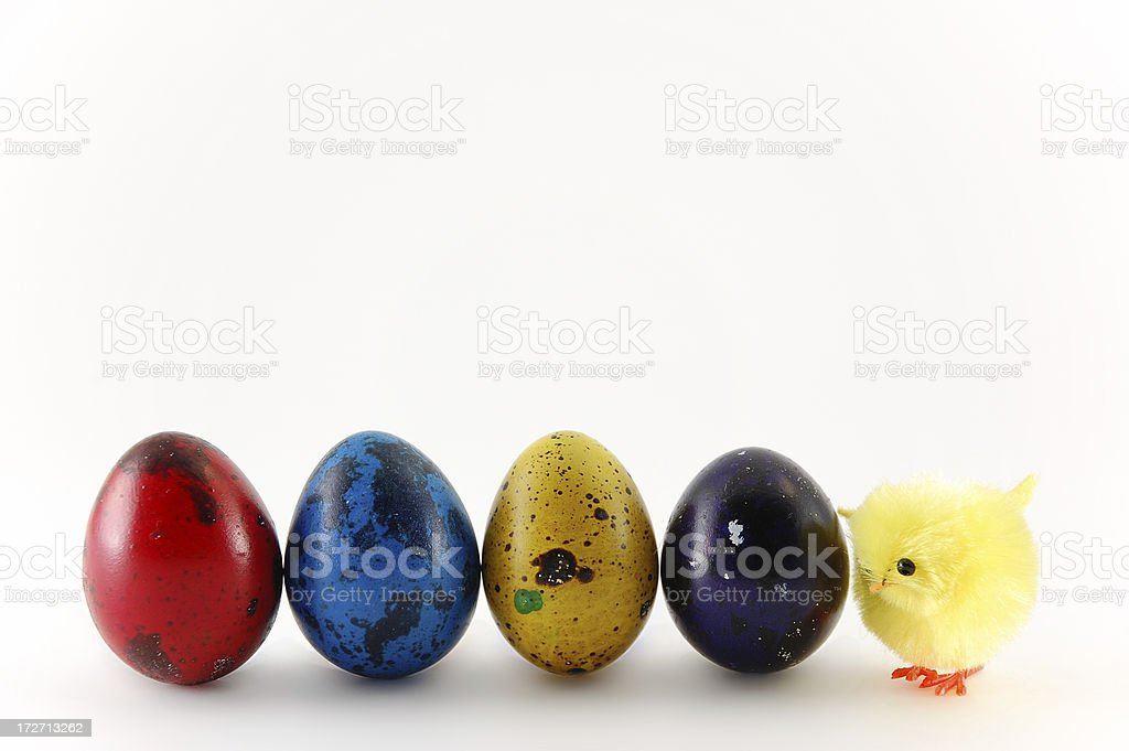 Easter Egg and Little Chick royalty-free stock photo