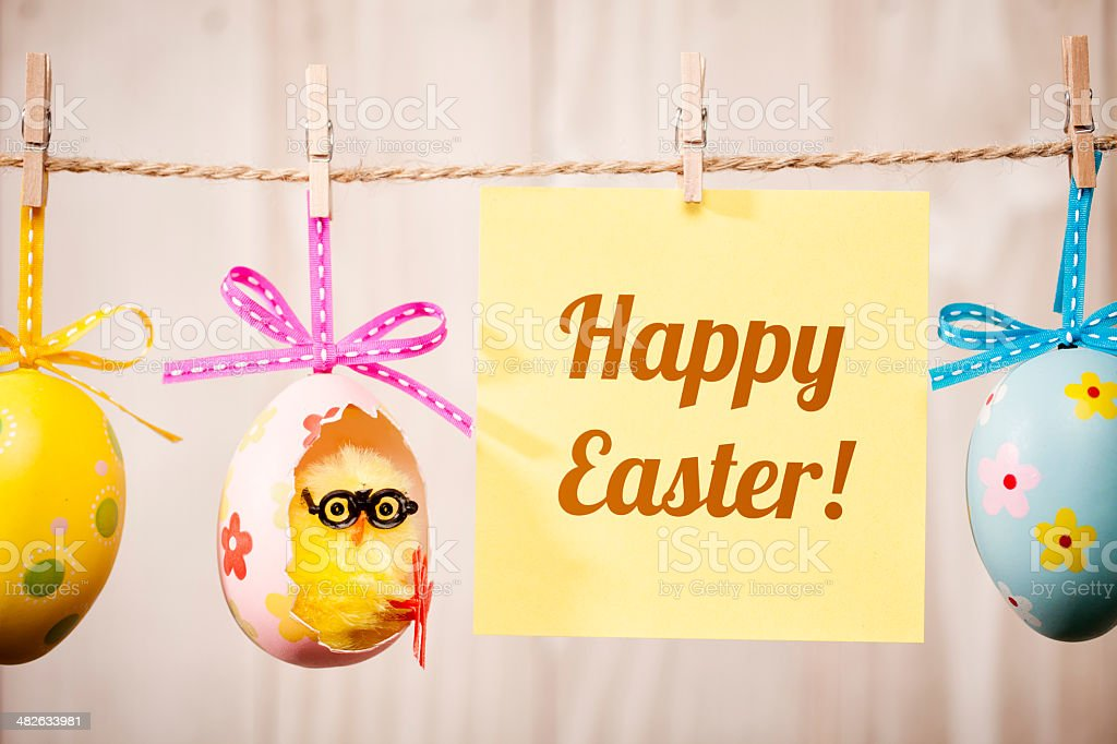 Easter Egg Chicken hanging on Clothesline stock photo