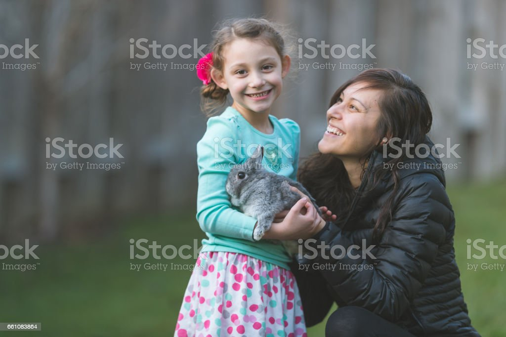 Easter egg hunt with bunny! stock photo