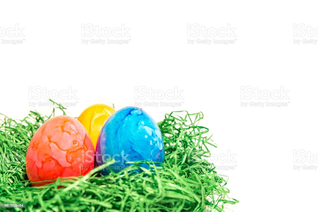 Easter egg in a easter nest made of green grass and white background stock photo