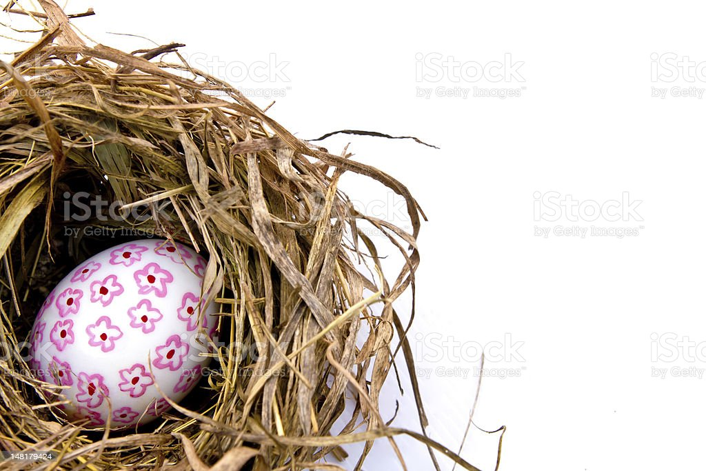 Easter egg in dry nest. royalty-free stock photo