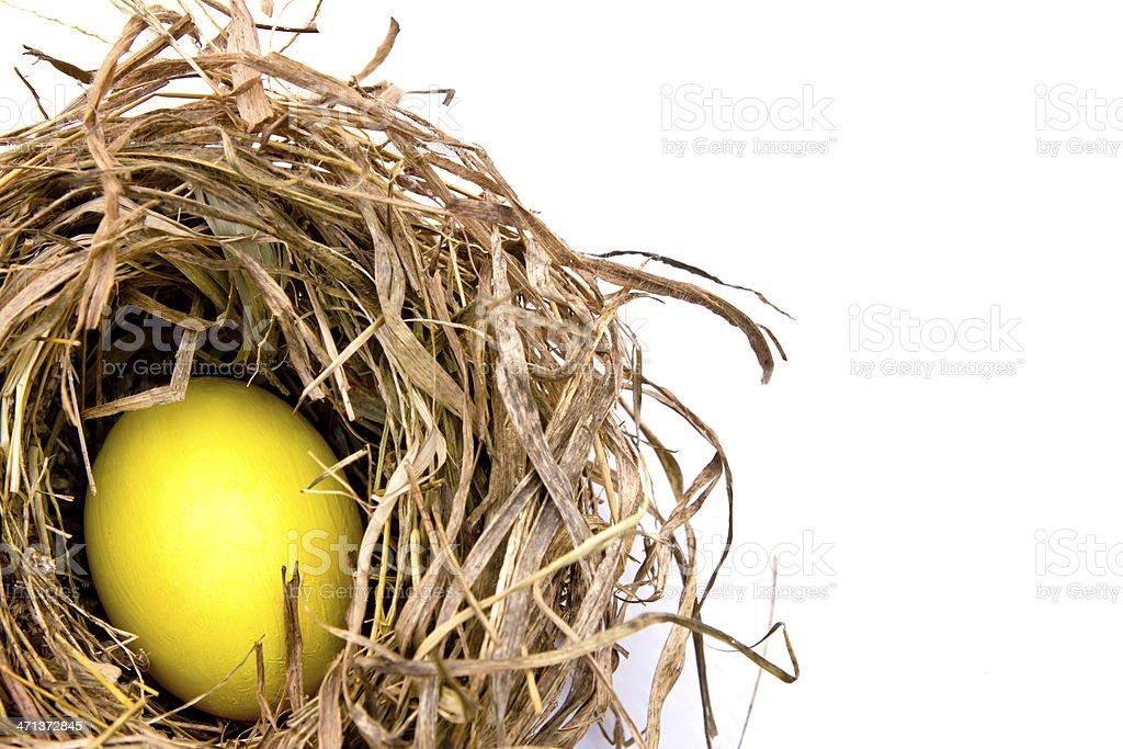 Easter egg in dry nest. royalty-free stock photo