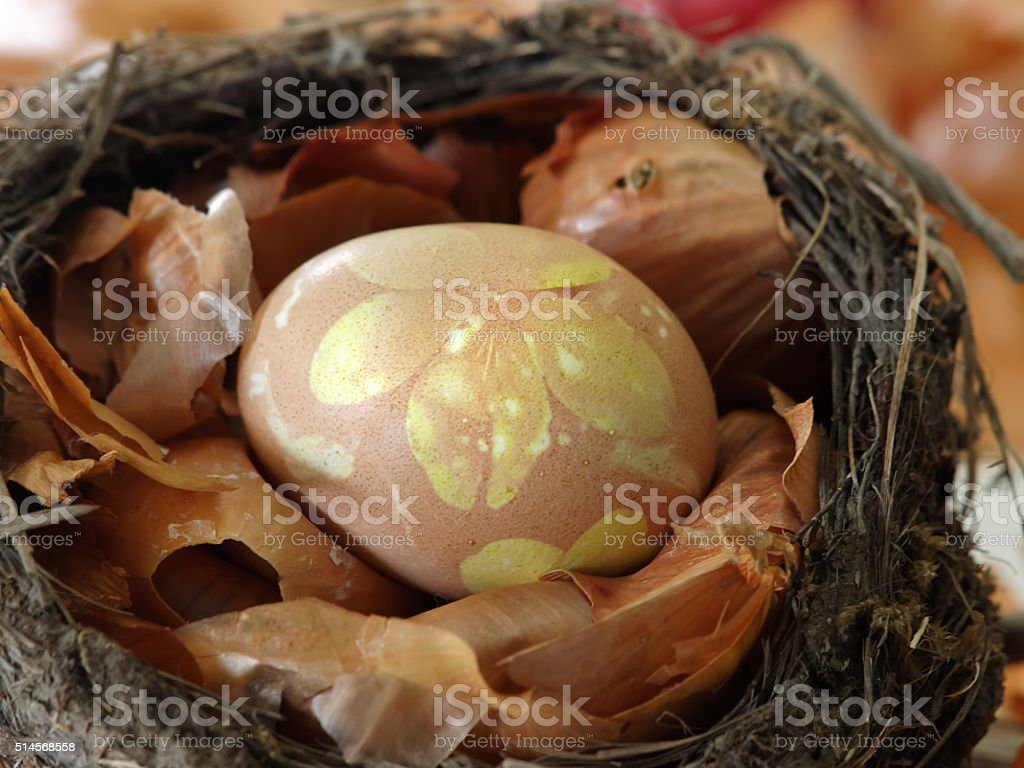 Easter egg in onion peel bird's nest royalty-free stock photo
