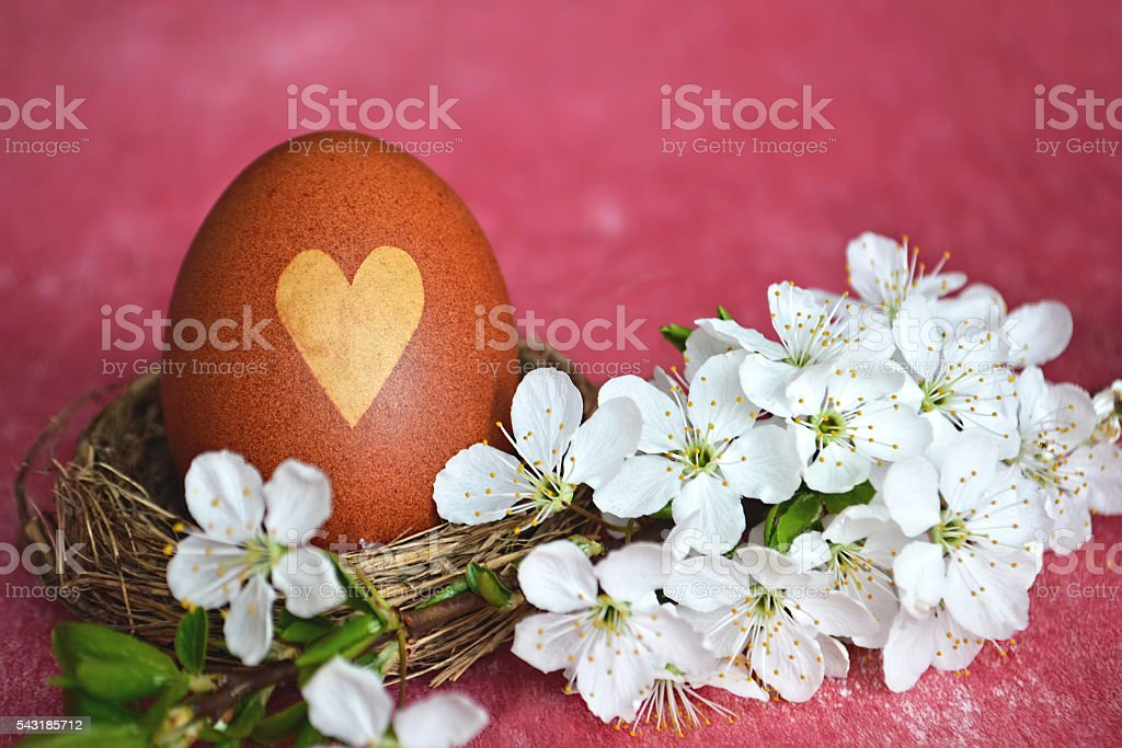 Easter egg in the nest and spring branch stock photo