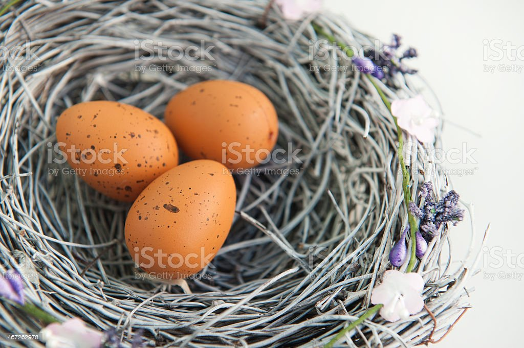 Easter egg nest on a white background stock photo