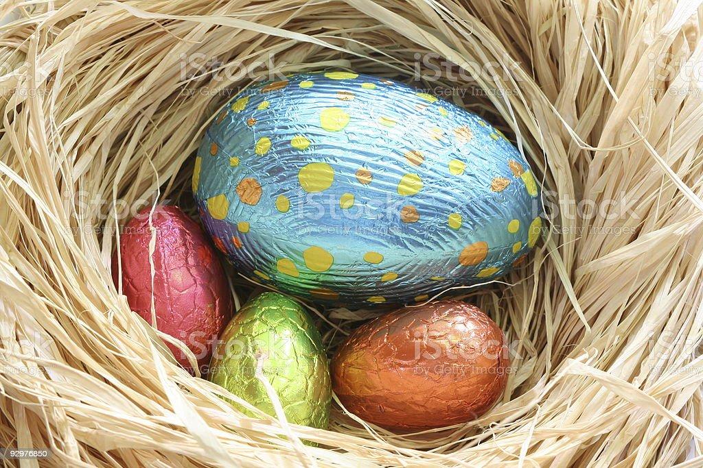 Easter Egg nest royalty-free stock photo