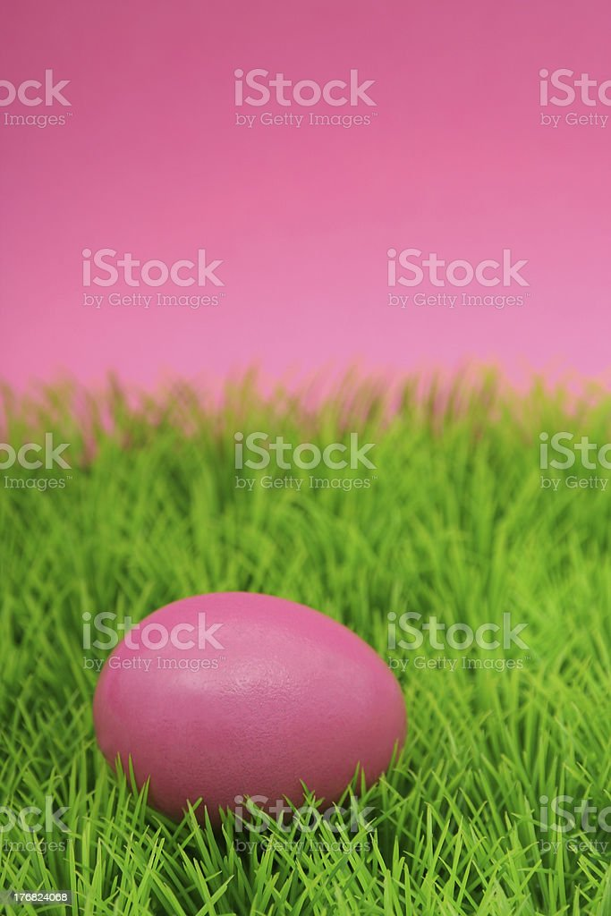 Easter egg on grass royalty-free stock photo