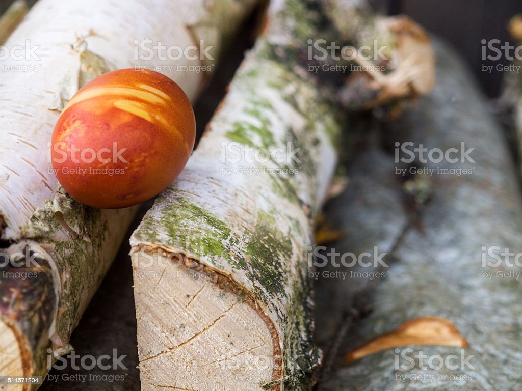 Easter egg on wooden logs royalty-free stock photo