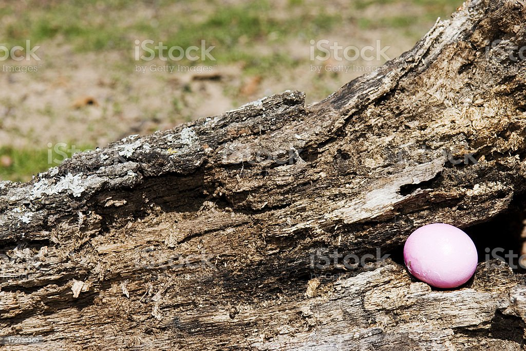 Easter egg Lizenzfreies stock-foto