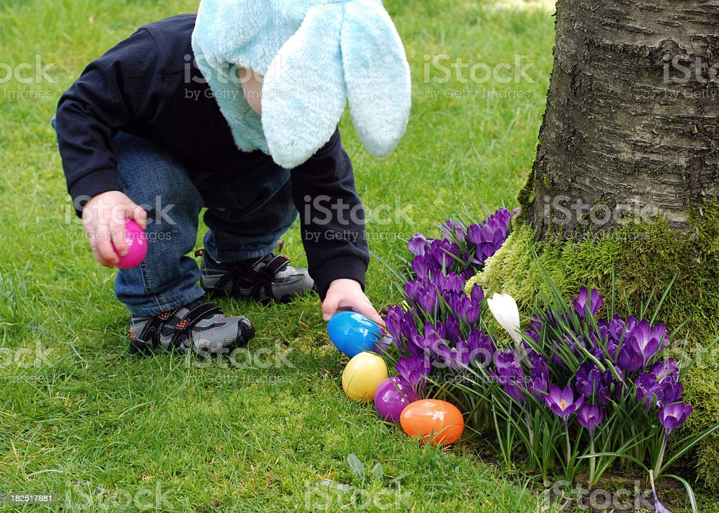 Easter egg with a boy finding plastic eggs stock photo