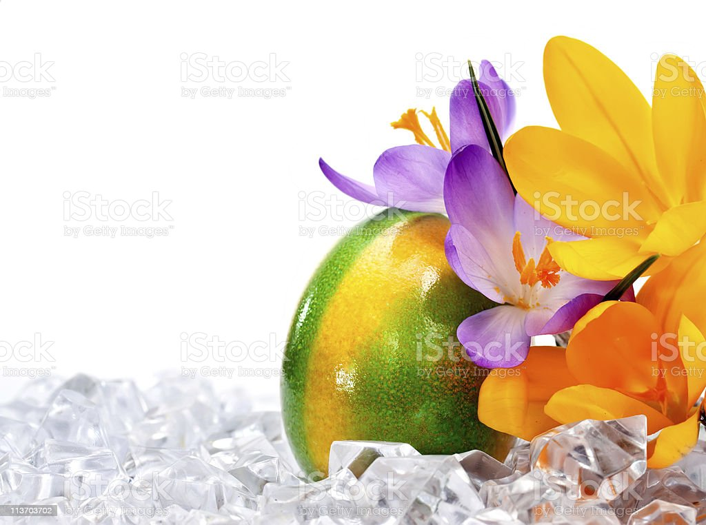 Easter egg with flowers royalty-free stock photo
