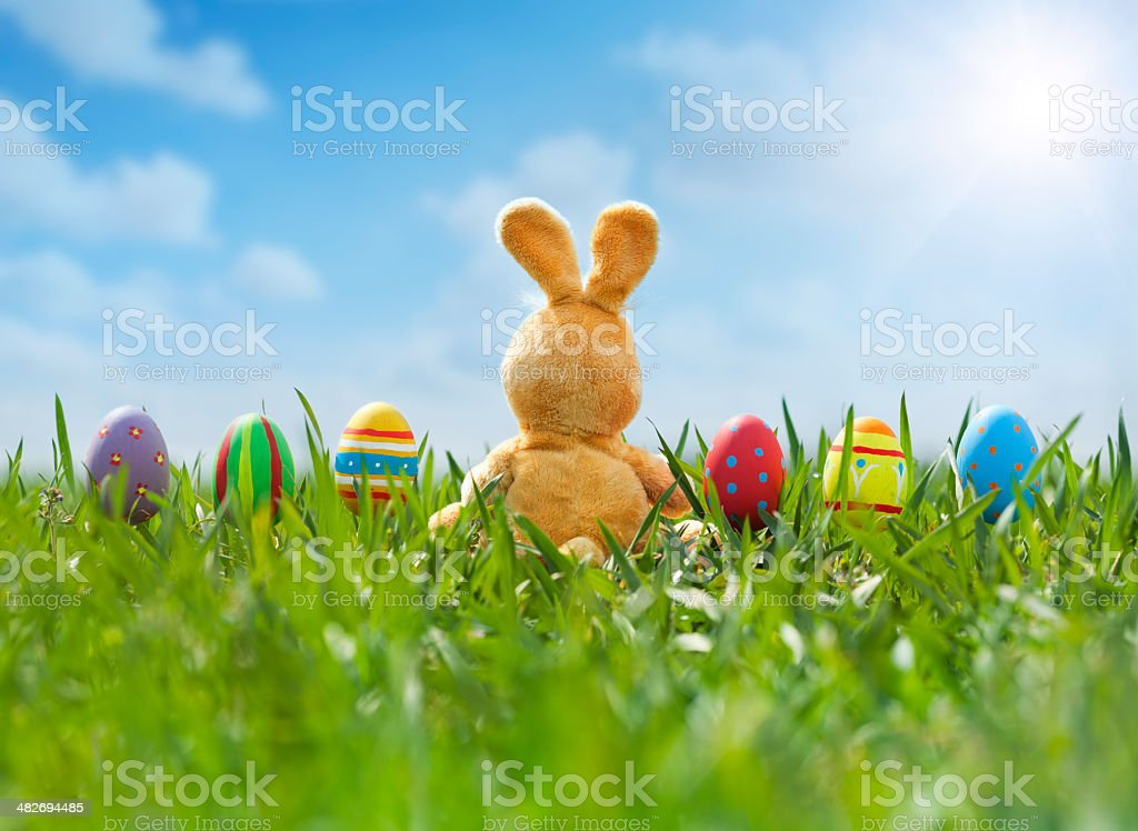 Easter Eggs and Bunny in Meadow stock photo