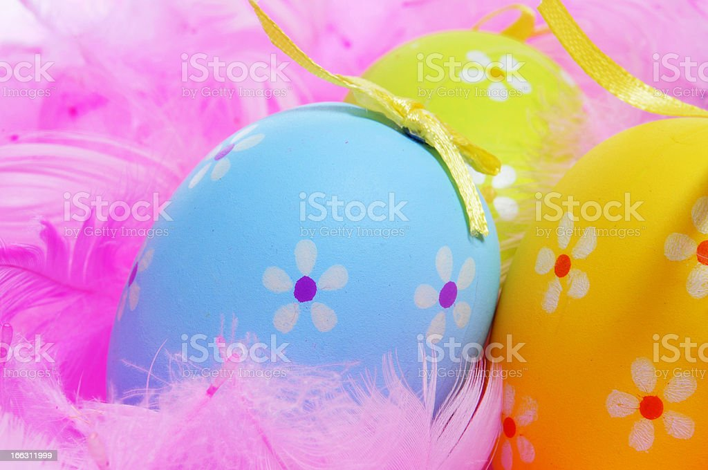 easter eggs and feathers royalty-free stock photo
