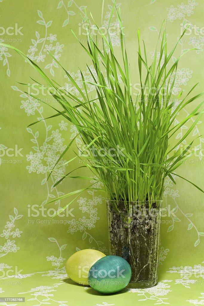 Easter Eggs and glass with  green Grass royalty-free stock photo