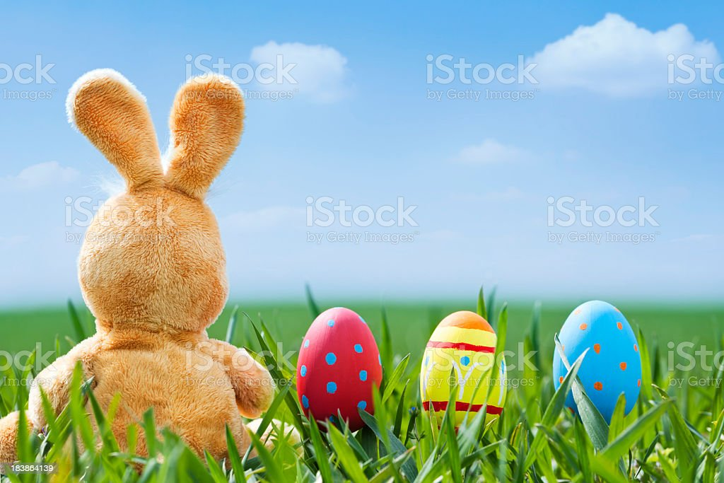 Easter Eggs and orange bunny royalty-free stock photo