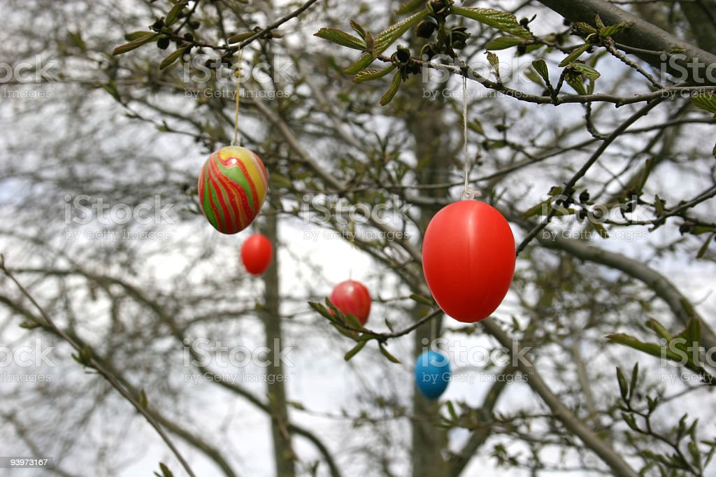 Easter eggs at branches of a tree royalty-free stock photo