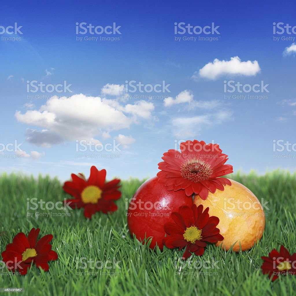 Easter eggs, flowers and meadow stock photo
