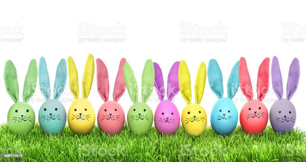 Easter eggs funny bunny green grass stock photo