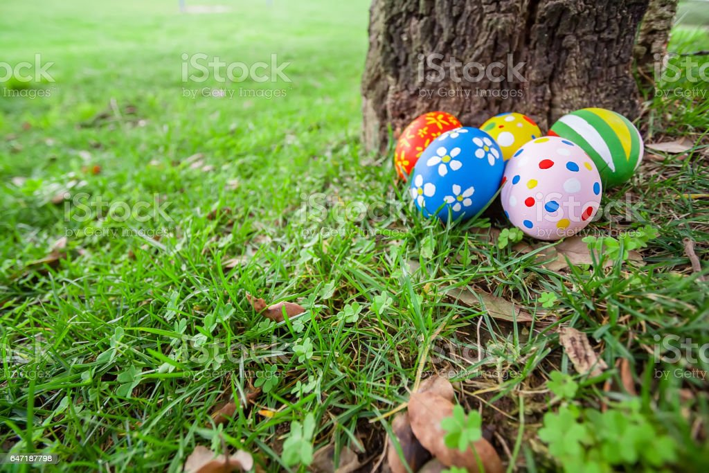 Easter eggs hidden on the grass behind a tree trunk, ready for the easter egg hunt stock photo