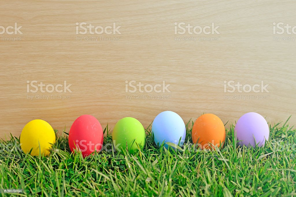 Easter eggs in a row on the meadow stock photo