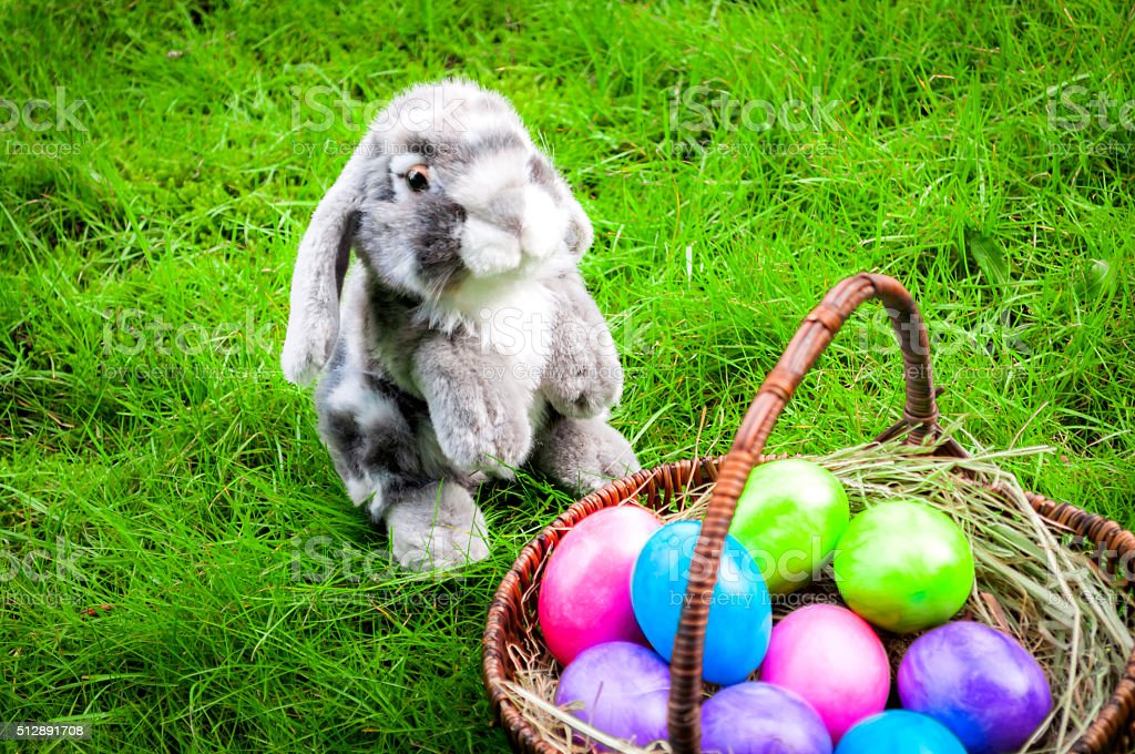 Easter eggs in a wicker basket and a rabbit stock photo