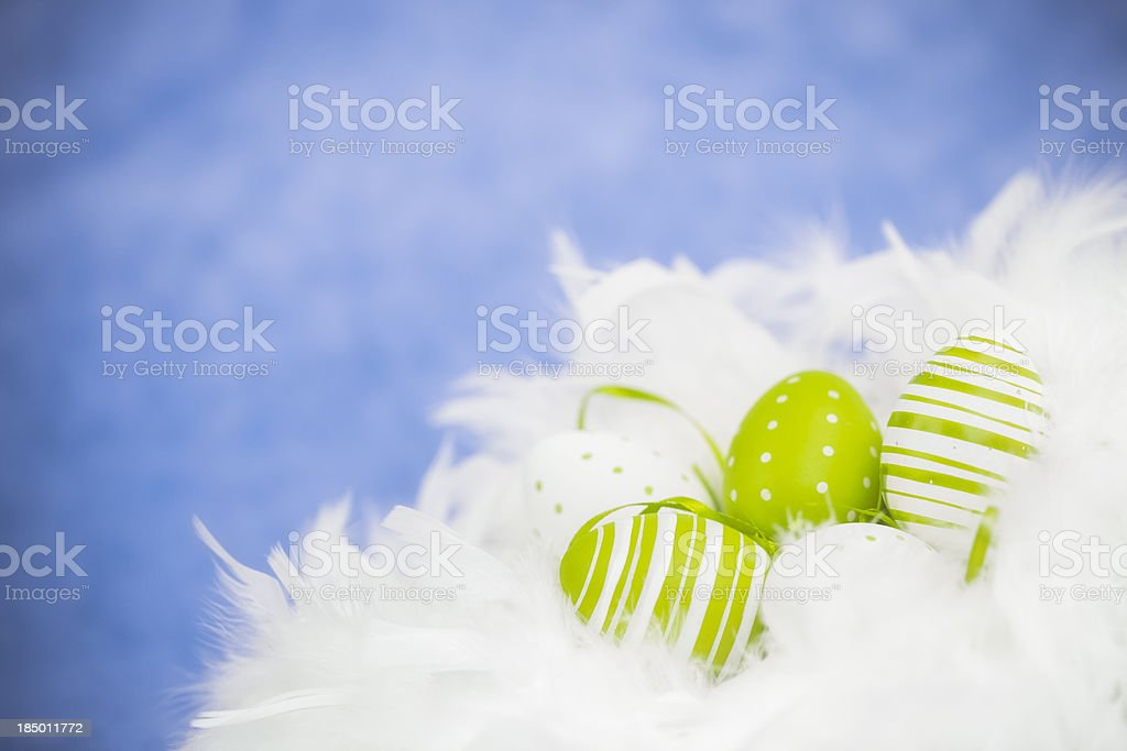 Easter Eggs in Feather Nest stock photo