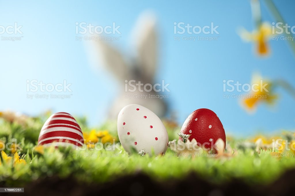 easter eggs in front of royalty-free stock photo