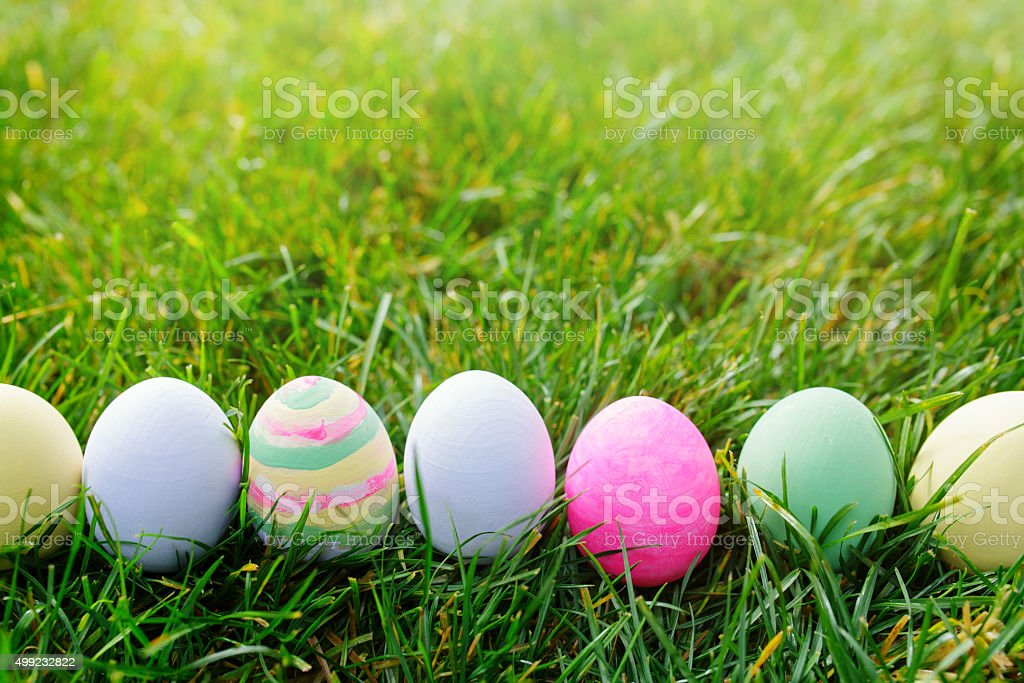 Easter eggs in green grass, easter concept stock photo