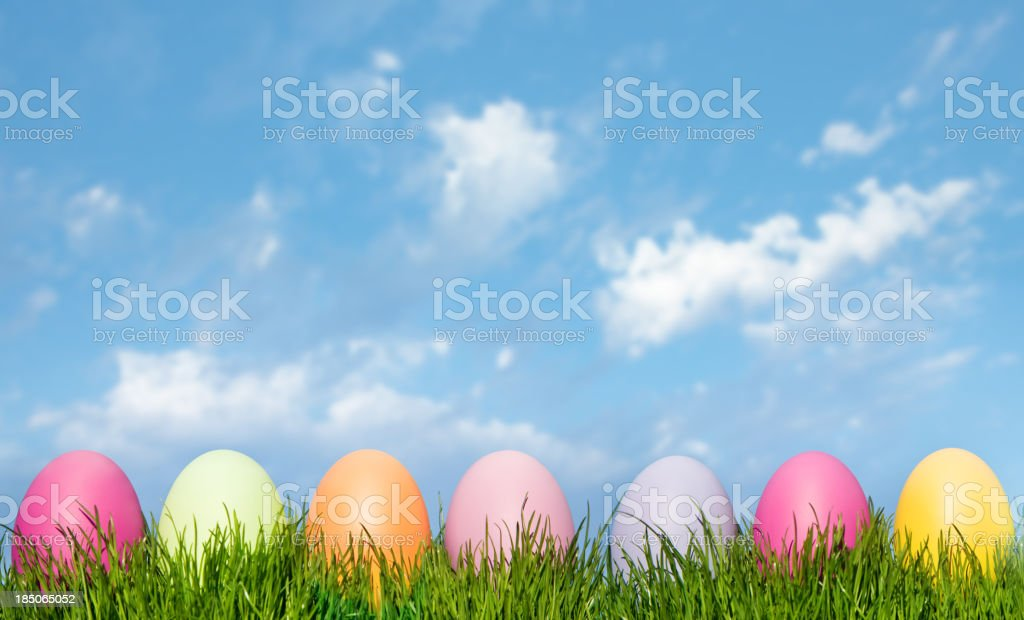 Easter Eggs In Green Grass on a Blue Sky royalty-free stock photo
