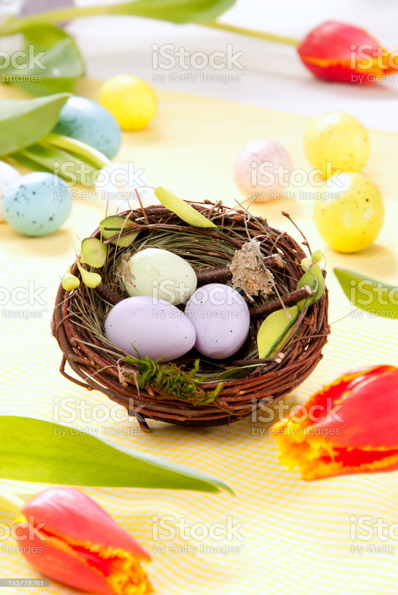 Easter eggs in nest royalty-free stock photo