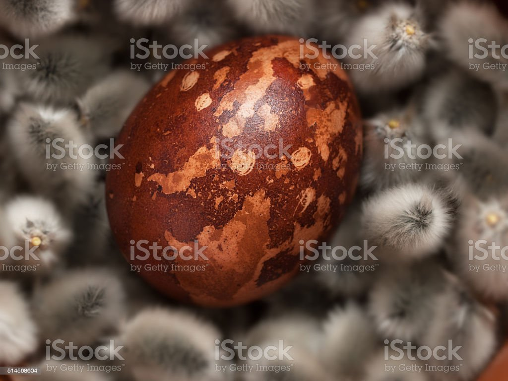 Easter eggs in pussy willow royalty-free stock photo