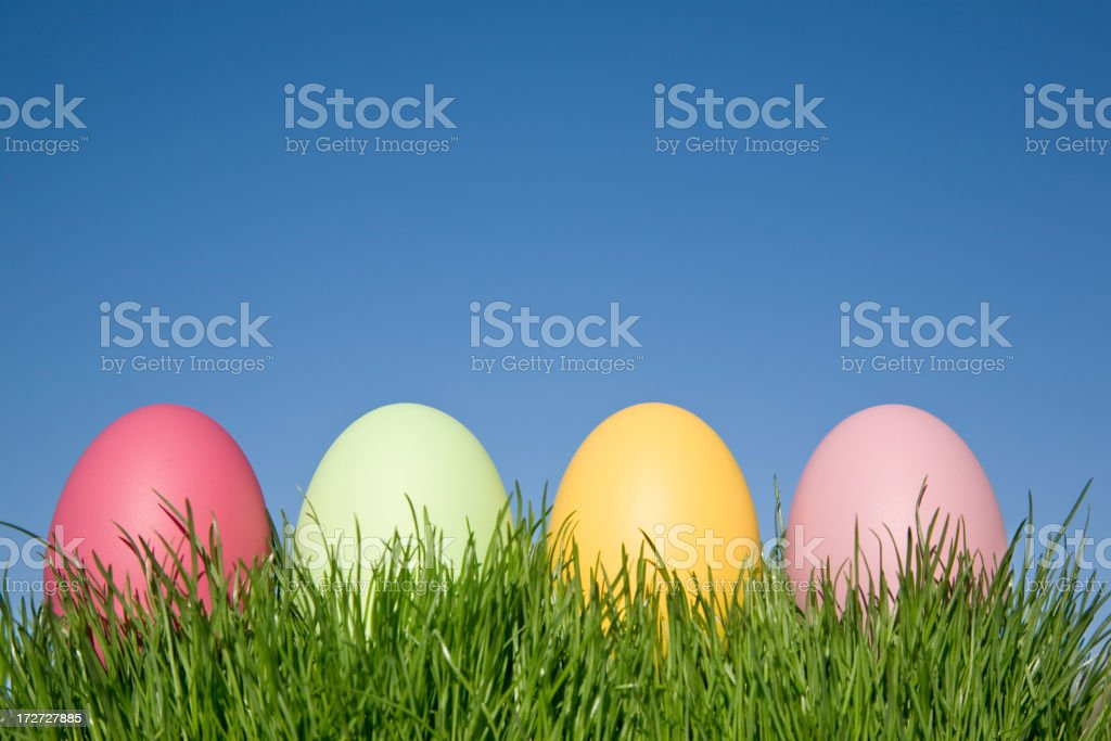 Easter Eggs in Row (XL) royalty-free stock photo