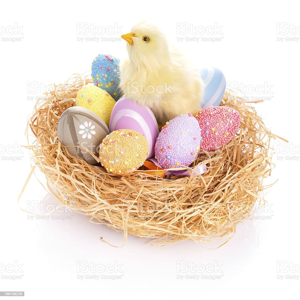 Easter eggs in the nest with baby chick royalty-free stock photo