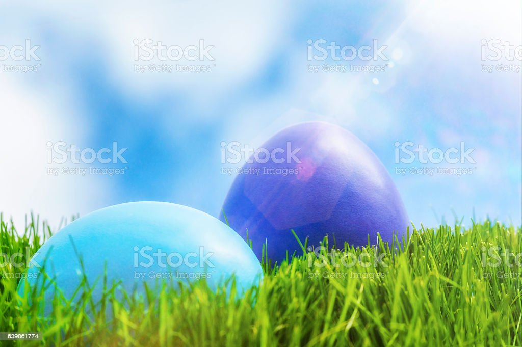 Easter eggs lying in grass as the sun shines down stock photo