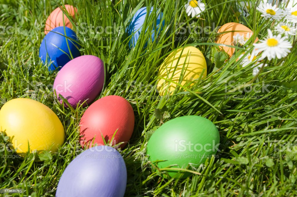 Easter eggs on a meadow royalty-free stock photo