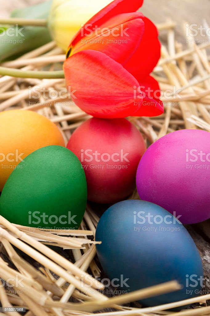 Easter eggs on straws stock photo