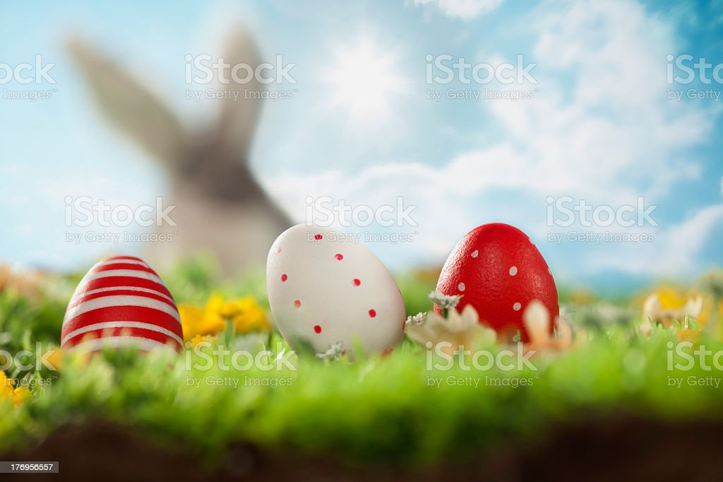 Easter eggs on the grass and rabbit on blur background royalty-free stock photo
