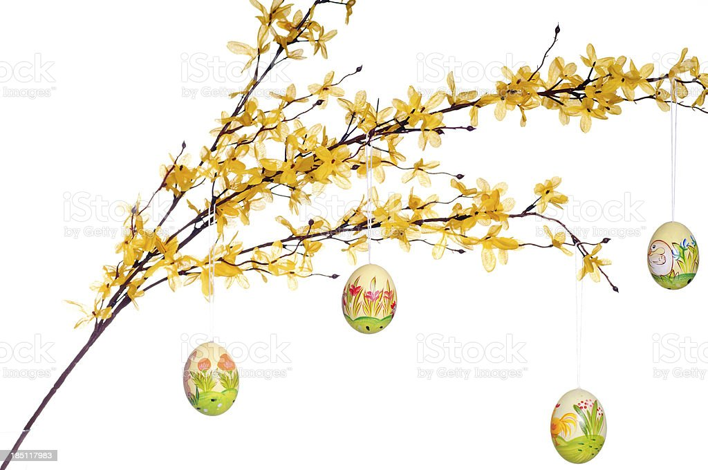 Easter eggs on twig stock photo