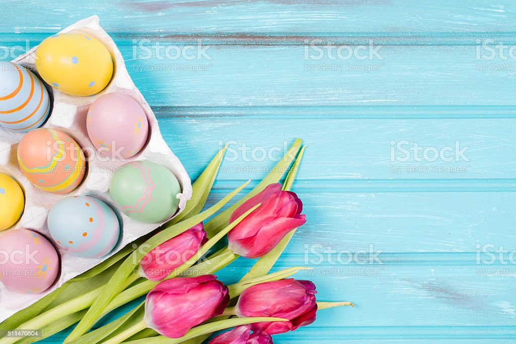 Easter eggs, tulips on vintage blue wood background. stock photo