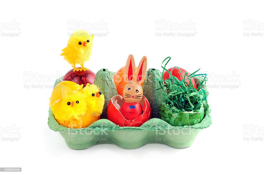 easter eggs with chicken and bunny in a green carton stock photo