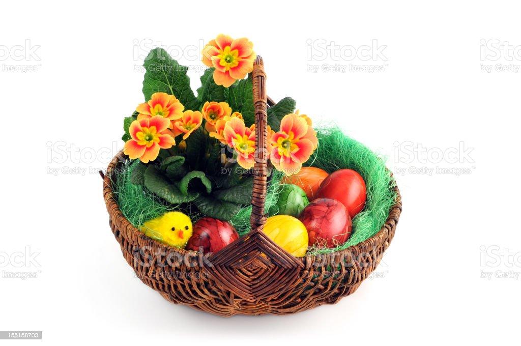 easter eggs with orange red primula Primrose chicken in basket stock photo