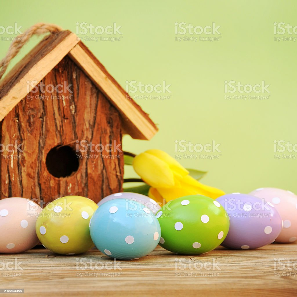 Easter eggs with tulips flowers and birdhouse stock photo