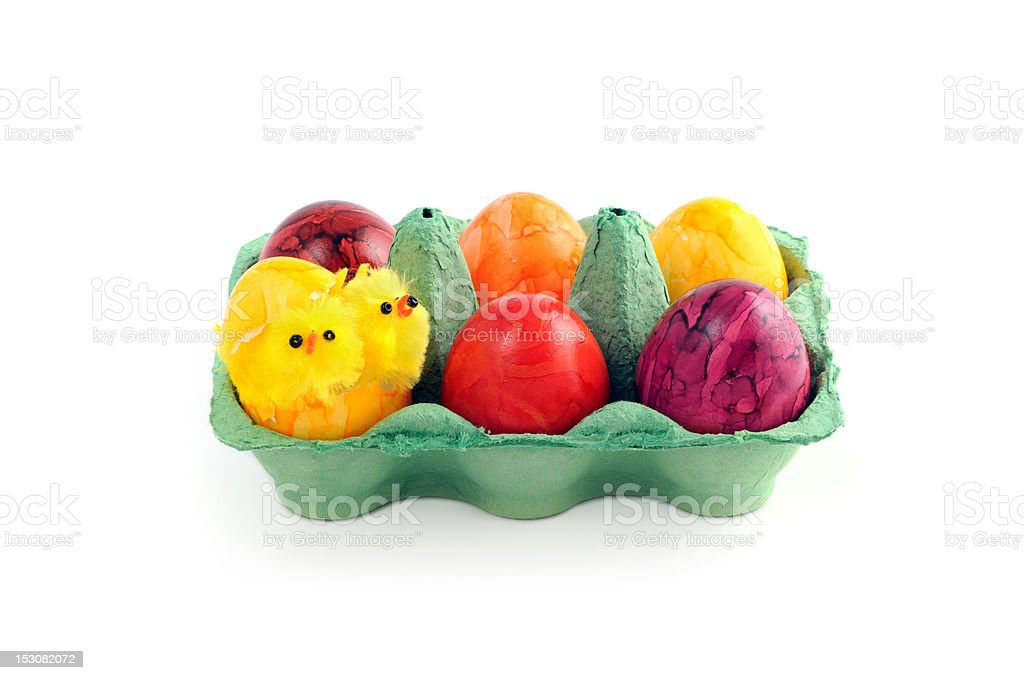 easter eggs with young chicken in a green carton royalty-free stock photo